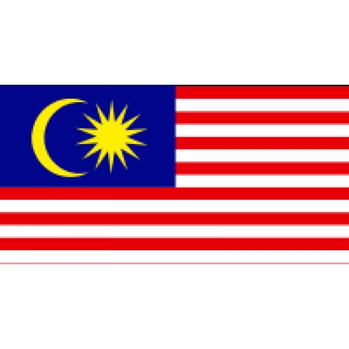 Malaizijos vėliava