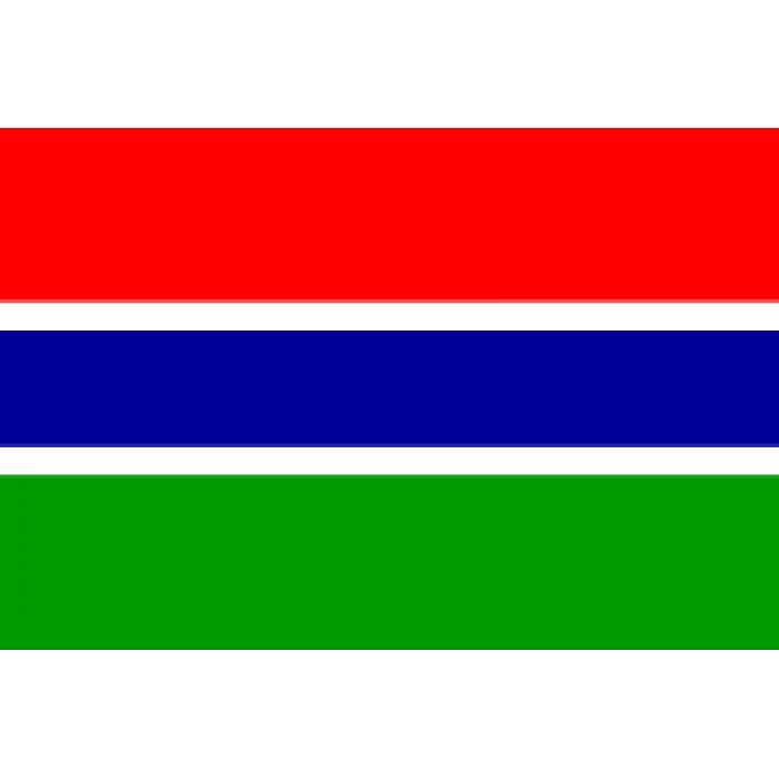 Gambijos vėliava