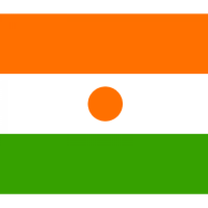 Nigerio vėliava