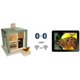 Modernus vabzdžių viešbutis kubo formos LIH- Svečiuose pas pelėdą